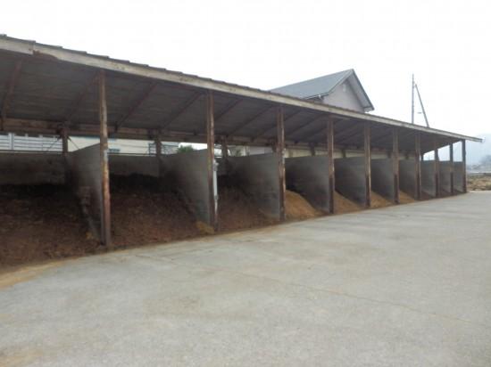 牛糞取り場