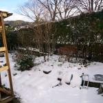 雪が少し積もった