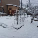 春の淡雪と物置の解体(2014年3月)